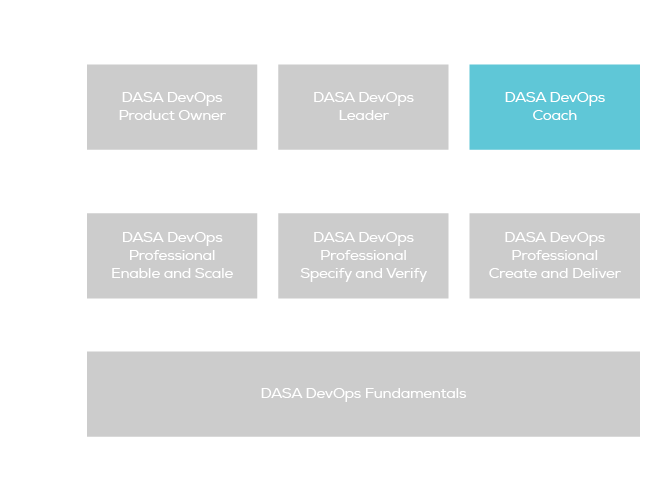 dasa-certification-scheme-coach
